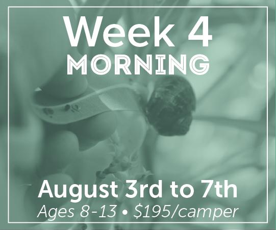 Week 4: Morning Session